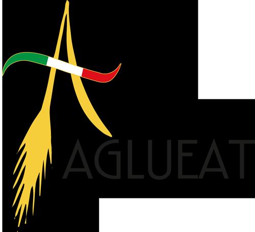 Logo-Agluit