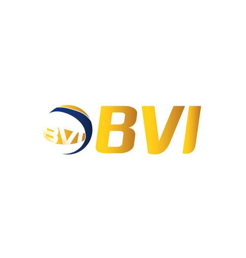 logo_bvi